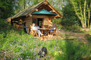 Pet-friendly-log-cabins-lake-district