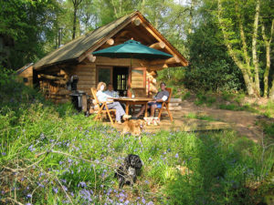 Dog friendly log cabins