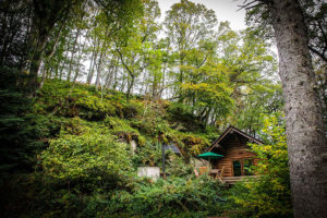 secluded-shankwood-log-cabins